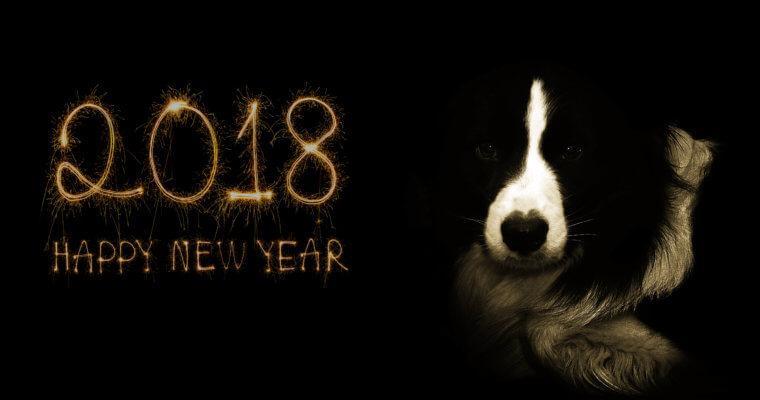 Ein neues Jahr 2018 winkt uns schon zu